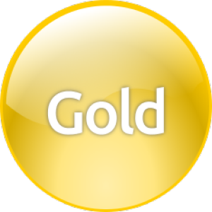 Gold Level Total Service Agreement (TSA) - Bronze Level Support